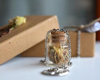 """Shahrazād"" necklace with dried calendula"