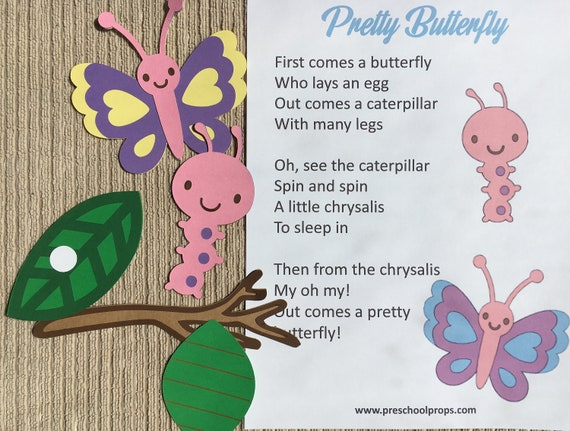 Butterfly Life Cycle Puppet / Felt Board Set