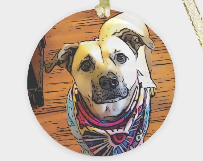 Custom Pet Portrait Ornament