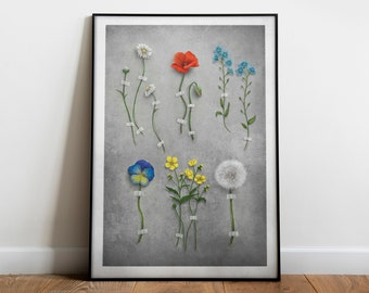 Ophelia's bouquet   Poster print   Artwork inspired by William Shakespeare   Literary gift   Illustration with field flowers   Art print