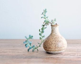 Polished Mud Ceramics
