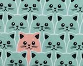 Cotton, kim, mint, cats, salmon