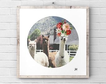 e112e311 Alpaca Print - Boho Chic - Summer Bloom Flower Crown - Printable Wall Art -  Llama Print