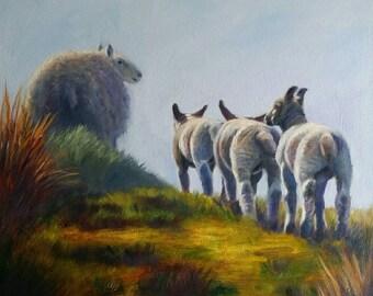 Following Ewe