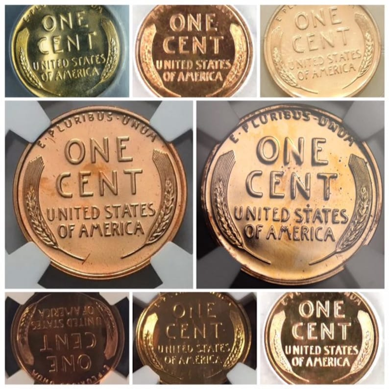 others Pennies 1 Roll Lincoln Wheat Cent Bank unsearched Wells Fargo BofA