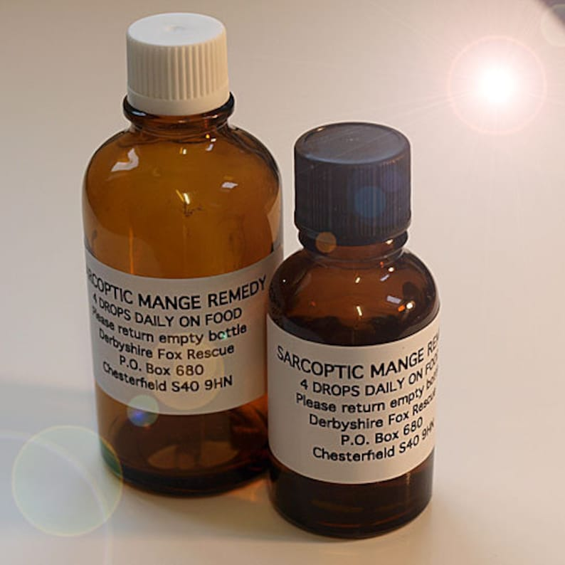 Sarcoptic Mange remedy (Arsenicum Alb and Sulphur 30c) is a homoeopathic  remedy for Sarcoptic Mange in foxes, dogs & domestic pets