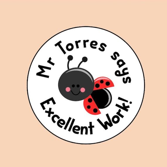 35x Super Star Personalised Teacher Praise School 25mm Stickers Adhesive 265