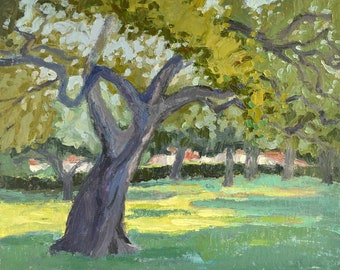 Oak Reaching (Lacy Park), Tree painting, Oil painting, Plein aire landscape painting, California landscape