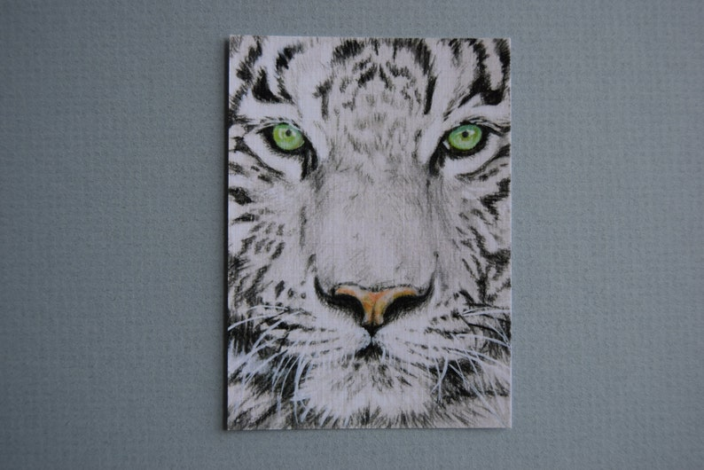 ACEO cards collection Copy original Animals mini painting Wild cats Tiger