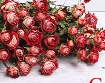 dried rose bouquet,30 rose flower heads in a bunch,dried rose flowers bouquet,dried flowers arrangement,desk decor home decor,wedding decor