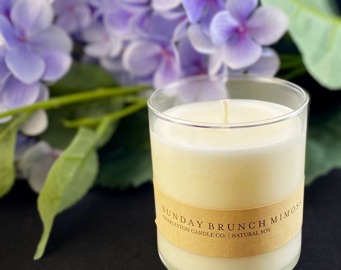 Charleston Candle Co. Hand-poured Nontoxic Soy Wax Candle 9 oz.