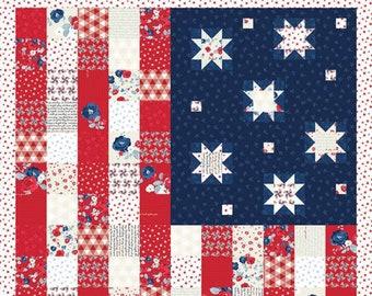 Riley Blake Designs Land of Liberty Flag Panel  (P10567-PANEL)