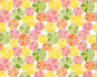 Riley Blake Designs Grove Slices Multi (C10141-MULTI)