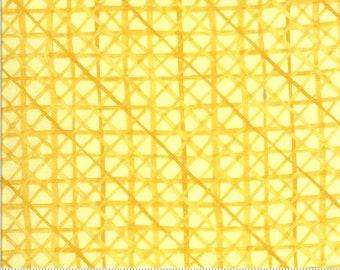 Moda Solana Criss Cross Buttercup (48685 12) 1/2 Yard Increments
