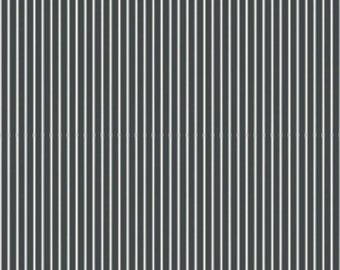 Riley Blake Designs Gingham Farm Stripes Charcoal (C8996-CHARCOAL)