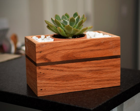 Wood Succulent Plant Box - Natural Oak & Walnut Wood Plant Holder - Handmade in USA - Mother Gift - Mason Jar Centerpiece