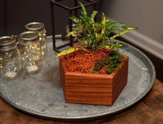 Succulent Wood Planter - Geometric Pentagon Shape - Teak Wood Flower Holder - House Warming Gift - Gift for Her
