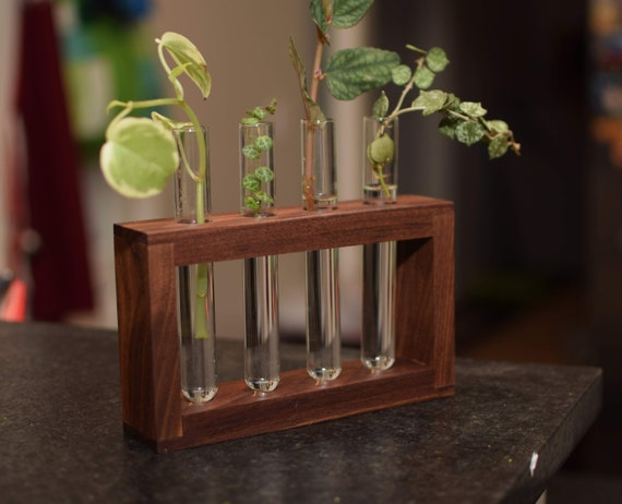 Walnut Plant Propagation Station with Four Test Tubes. Wall Hanging Plant Succulent Display. Hydroponic Water Plant Stand.