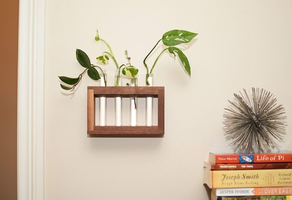 Hanging Walnut Plant Propagation Station with Four Test Tubes. Wall Mounted Plant Succulent Display. Hydroponic Water Plant Stand.