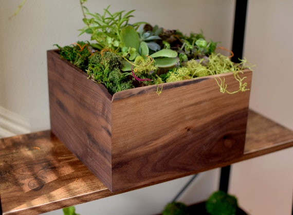 Walnut Wood Planter Box for Succulents - Perfect for Centerpiece Flowers or Spices - Mother Gift - Mason Jar Holder - Table Accessory