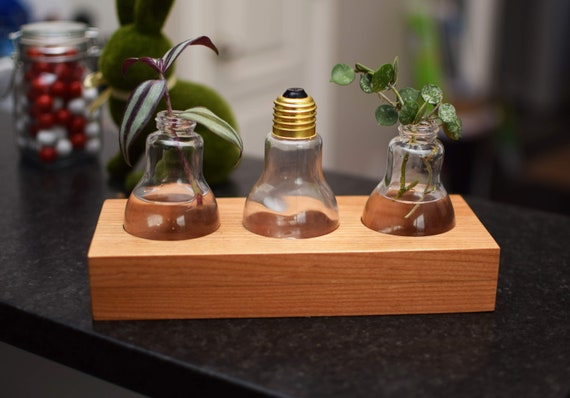 Light Bulb Plant Propagation Station with Glass Vases. Hard Wood Succulent Growing Planter. Water Hydroponic Stand for Plants.