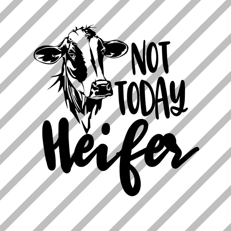 Not Today Heifer Car Decal|Laptop Decal|Tablet Decal|Phone Decal|Tumbler  Decal\HTV Decal