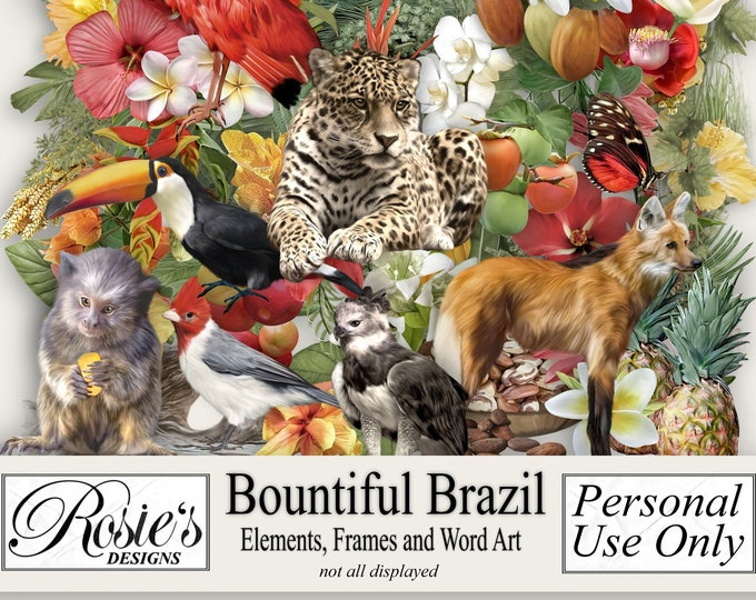 Bountiful Brazil Elements Frames and Word Art