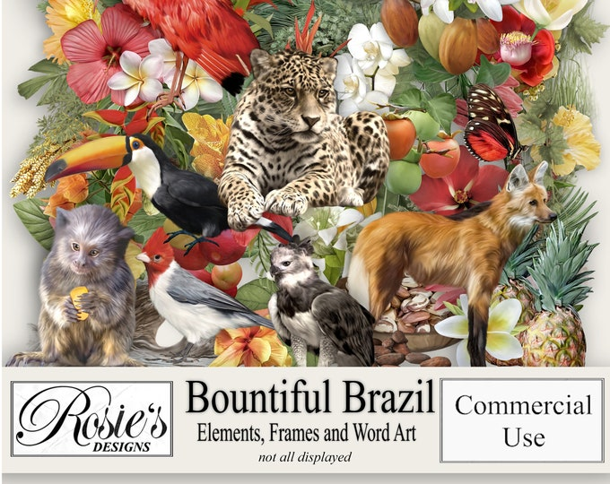 Bountiful Brazil Elements Frames and Word Art, Commercial Use