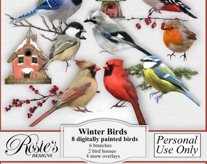 Winter Birds Personal License