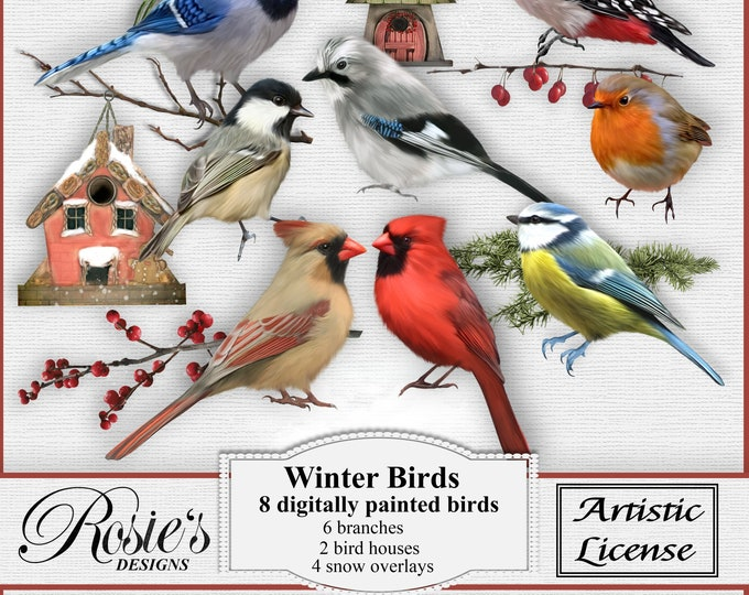 Winter Birds Artistic License
