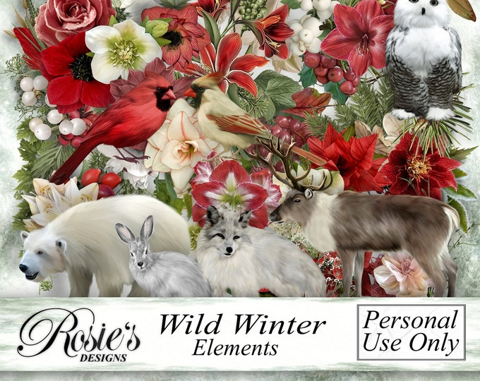 Wild Winter Elements - Personal Use
