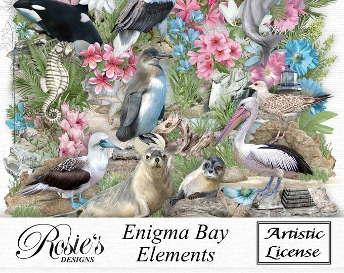 Enigma Bay Elements Artistic License