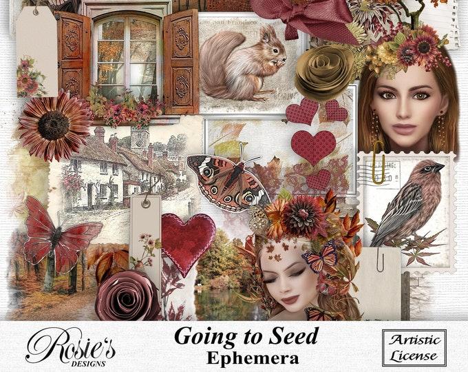 Going To Seed Ephemera Artistic License