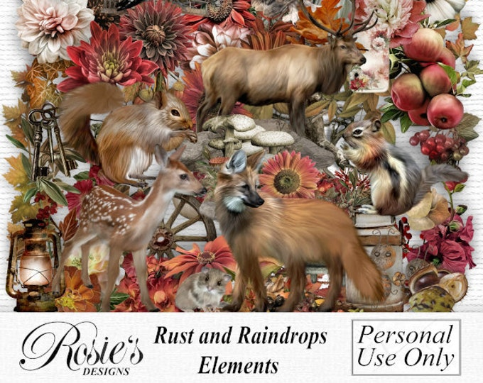 Rust and Raindrops Elements