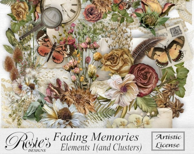 Fading Memories Elements 1 Artistic License