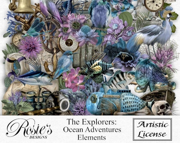 The Explorers, Ocean Adventures Elements Artistic License