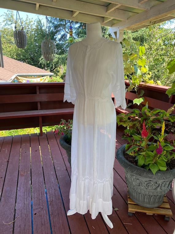 Antique Edwardian Dress / Edwardian Dress / vinta… - image 3