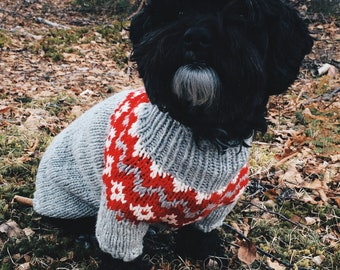 e65ee66323b4 Hand-Knit Icelandic Dog Sweater