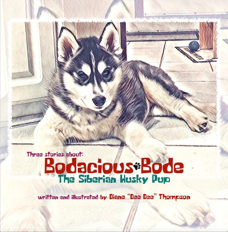 Bodacious Bode  The Siberian Husky Pup image 0