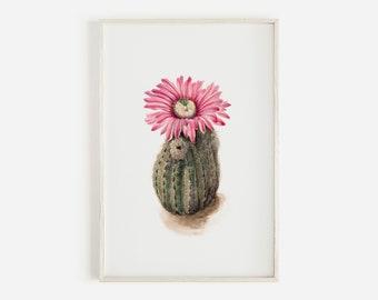 Turkeyhead Cactus Print, Bright Pink Cactus Flower, Succulent Wall Art, Boho Vintage Art, Arizona Plant, Cacti Illustration Botanical Poster