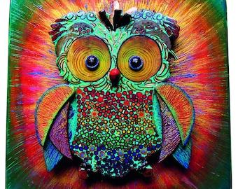 Big Bang owl