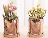 Metallic Ceramic Planter with a Tray, Minimalist Planter, Scandinavian Cactus Planter Pot,Haworthia Modern Planter Indoor,Cache Pot de Fleur
