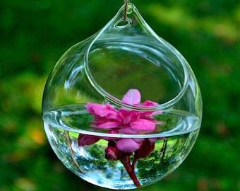 Hanging Glass Planter, Hydroponic Vase, Hanging Terrarium Glass Vase, Tillandsia Air Plant Holder, Succulent Terrarium, Plant Cuttings Vase