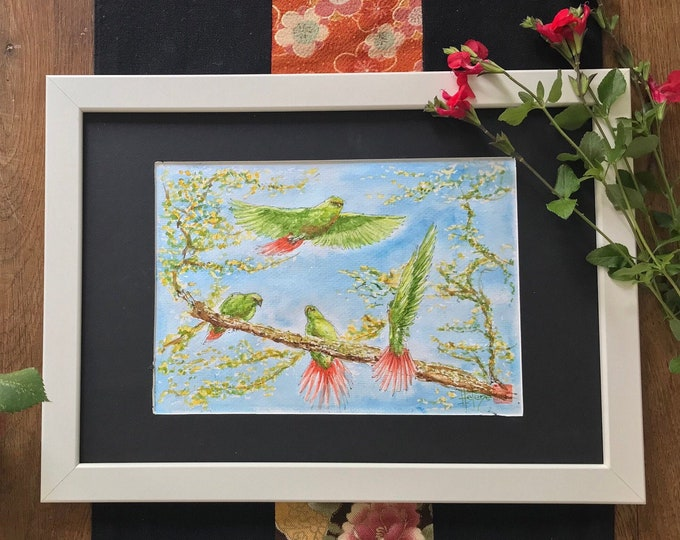 Painting in watercolor, the Magellanic Conures. For Mother's Day, birthday, Valentine's Day. Original hand-painted watercolor.