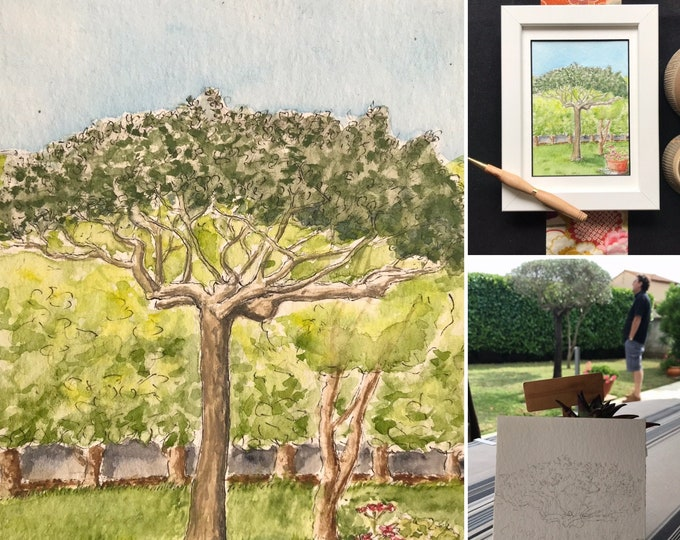 Watercolor postcard format, the olive tree of my father-in-law's garden. hand-painted painting.