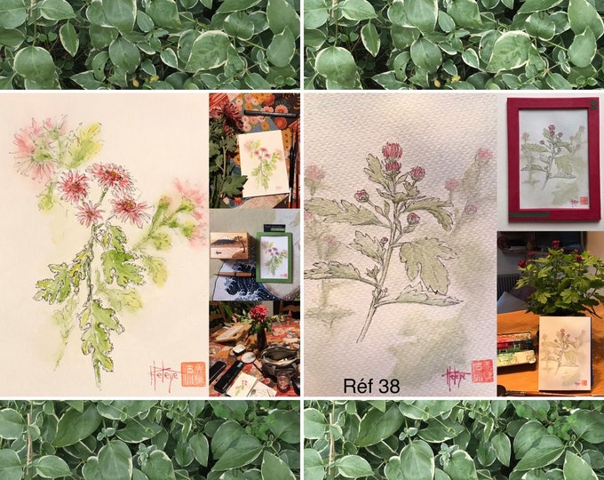 Choice of original watercolors, chrysanthemums, small-format postcards, hand-painted.