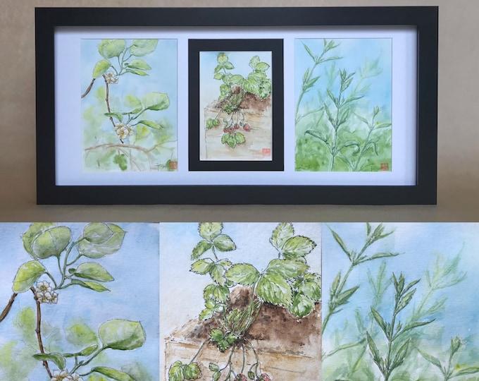 """Triptyque d'aquarelles """"le potager au printemps"""". Originales peintes à la main encadrées"""