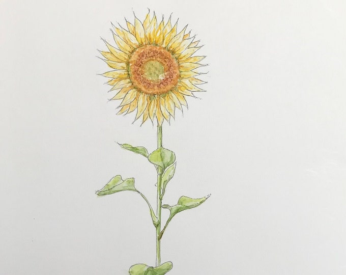 Painting in watercolor, the sunflower, original hand-painted. For Mother's Day, birthday, Valentine's Day.
