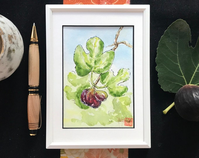 Watercolor, the fig of the garden. Postcard format. Original hand painted.
