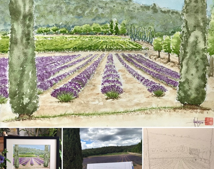 Watercolor, the lavender field in Provence, hand painted painting. Frame 30x40 cm.